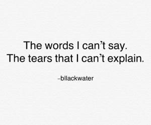 black, everything, and explain image