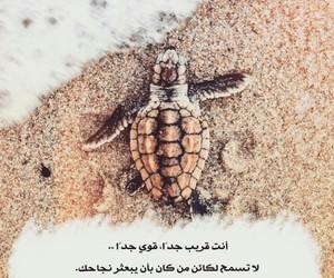 كلمات, ﻋﺮﺑﻲ, and ﺍﻗﺘﺒﺎﺳﺎﺕ image
