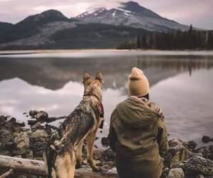 dog, lake, and soledad image