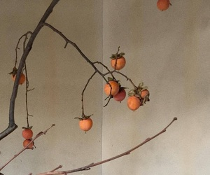 fruit and peaches image