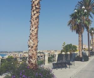 italia, palmtree, and love image