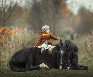 baby, cheval, and equestrian image