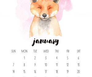 fox, january, and 2018 image