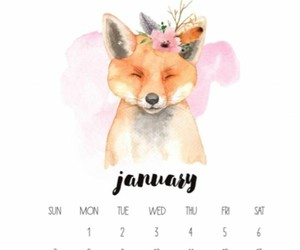 fox, january, and 2018 image