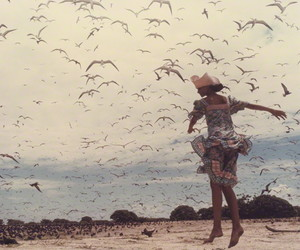 birds, freedom, and summer image