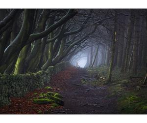 derbyshire, fog, and mist image