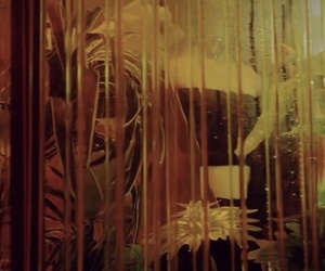 green, greenhouse, and music video image