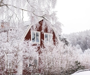 sweden, winter, and love image
