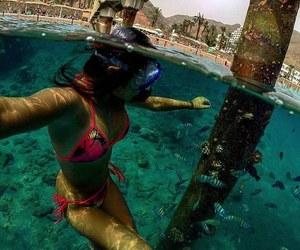 cool, life, and mergulho image