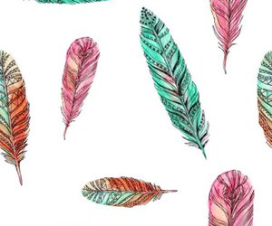 feather and background image
