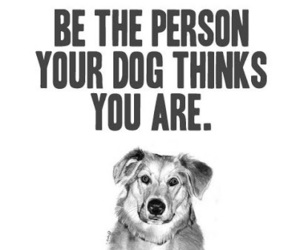 dog, quotes, and person image