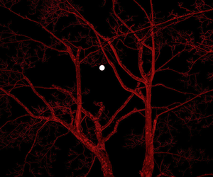 red, moon, and tree image