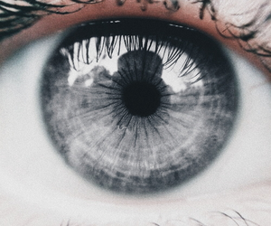 eye, eyes, and grey image