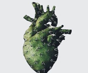 green, heart, and cactus image
