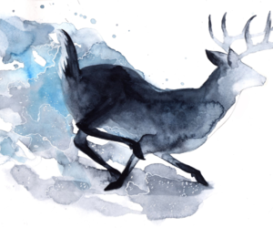 art, constellations, and deer image
