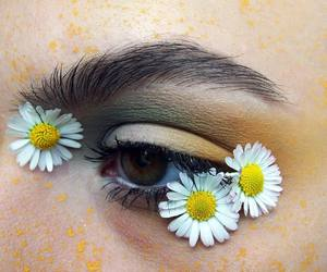 aesthetic, daisies, and yellow image