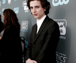 lady bird, call me by your name, and timothee chalamet image