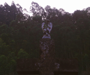 angel, anjo, and cemitery image