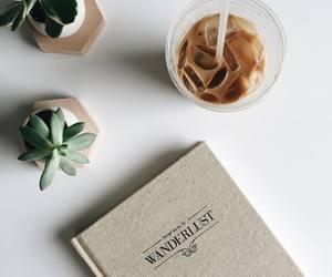 coffee, plants, and minimal image