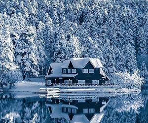 beautiful, cabin, and mountain image