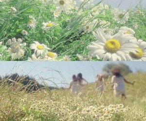 aesthetic, girls, and daisy image