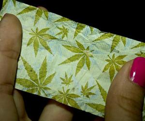 weed and rolling papers image