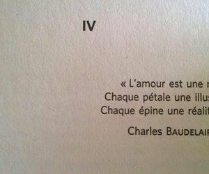 amour, quotes, and baudelaire image