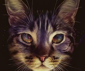 cat, art, and eyes image