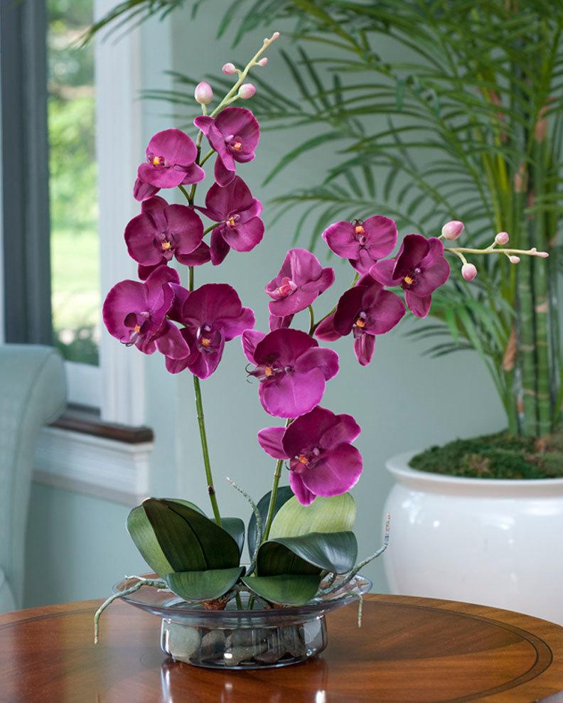flower, fushia, and green image
