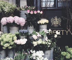 beautiful, city, and daisies image