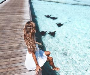 beach, beauty, and inspiration image