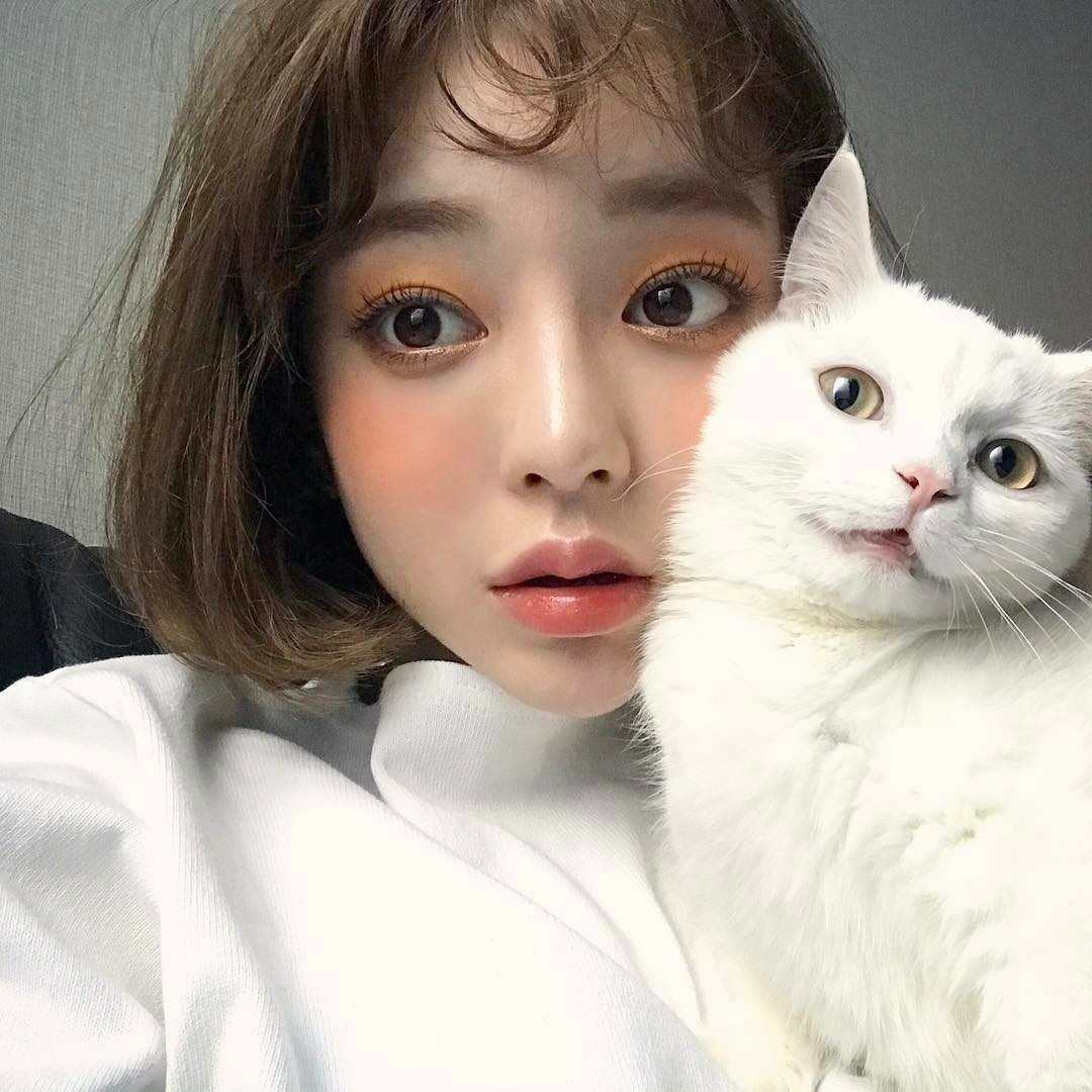 ulzzang, cat, and girl image