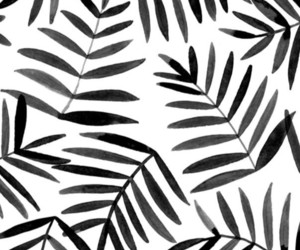 wallpaper and black and white image
