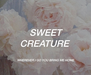aesthetic, lyric, and music image