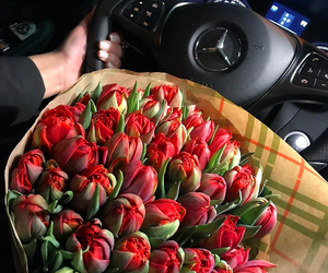 flowers, beautiful, and car image