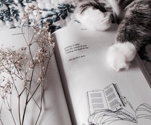 Image by ✩ Carolina ヅ