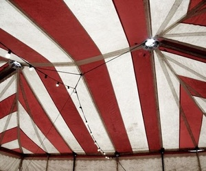 circus, red, and tent image