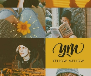 edit, wallpaper, and yellow mellow image
