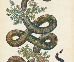 snake, art, and green image