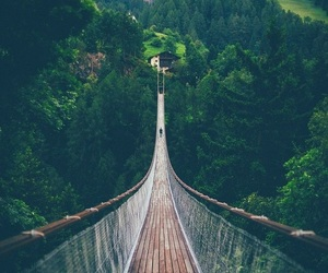 nature, travel, and bridge image