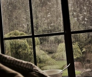 rain, cozy, and window image
