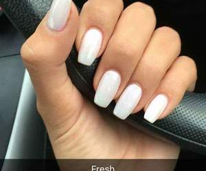 fresh, hands, and nails image