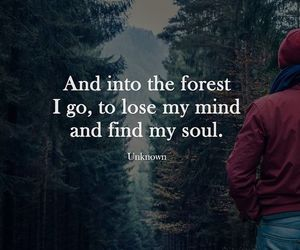 quotes, forest, and soul image
