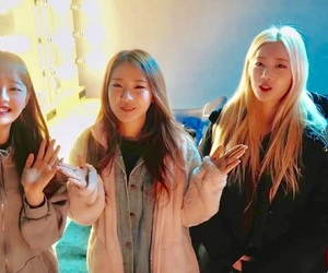 kpop, haseul, and jinsoul image