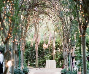 wedding, flowers, and lights image