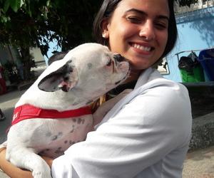 bulldog, cachorro, and pet image