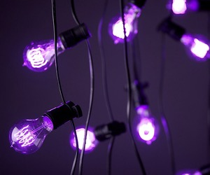 light, bulb, and purple image