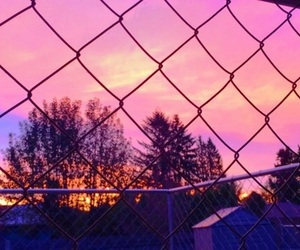 fence, pink, and purple image