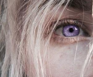 dragon and purple image
