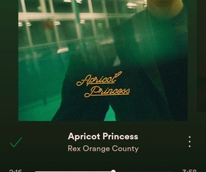 aesthetic, music, and apricot princess image